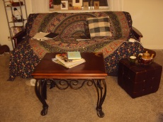 sayonara senior house couch, hello living room futon
