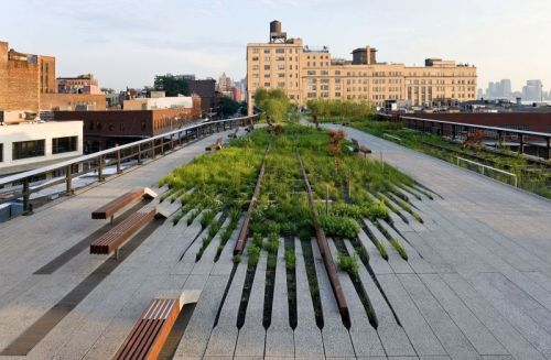 The High Line, a park in New York City where vegetation grows over abandoned train tracks. A fitting image, I think. Photo credit: NYC Parks & Rec.